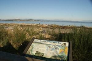 iverson spit preserve park camano island