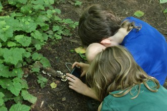 kids in nature, hiking with children, saint edward state park