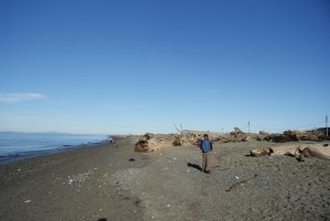 Dungeness spit nwr, beach with kids, hiking with children