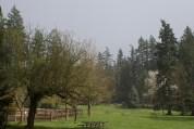 farrel-mcwhirter Park