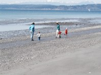 Beach at Discovery Park