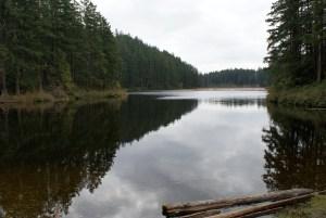 anacortes community Forest lands