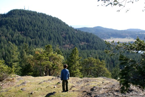 sugarloaf, anacortes community forest land, hiking with children