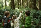bridle trails sp, kids in nature