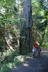 acfl, whistle lake, anacortes hikes, hiking with children