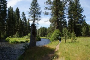 metolius river trail, hiking central oregon