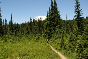 hiking mt rainier, hikes for kids