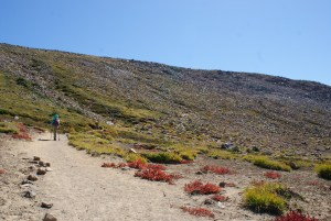 sunrise trails, burroughs mountain trail, hiking with children