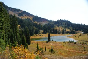 mount rainier national park hikes for kids, chinook pass hiking