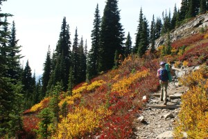 naches loop trail, hiking with kids, mount rainier fall hikes