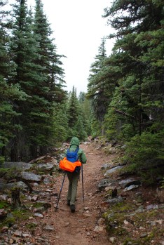 hiking with kids, best hikes for kids, fall hiking, north cascades