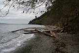 Beach trail, south whidbey state park, hiking with children