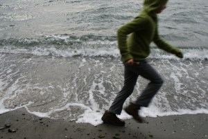 south whidbey state park, beach trail