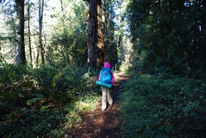 ridgefield NWR, hiking with children, birding winter vancouver