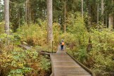 shadow of the sentinels, hiking with children, fall hiking, baker lake trails