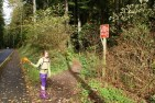 southwest county park, edmonds hiking, hiking with children, fall hikes, nature walk