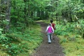 newhalem trails, hikes for kids, archaeology hikes, artifacts, ada accessible,