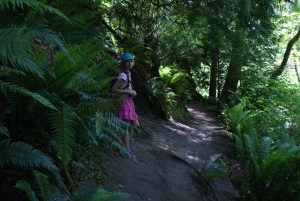 Boeing Creek park, shoreline, hiking with kids, kids in nature