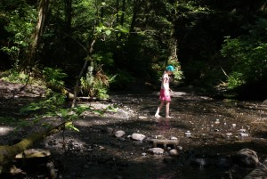 kids in nature, boeing creek park, shoreline, nature walks for kids