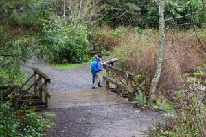 squires lake, bellingham, hiking with kids