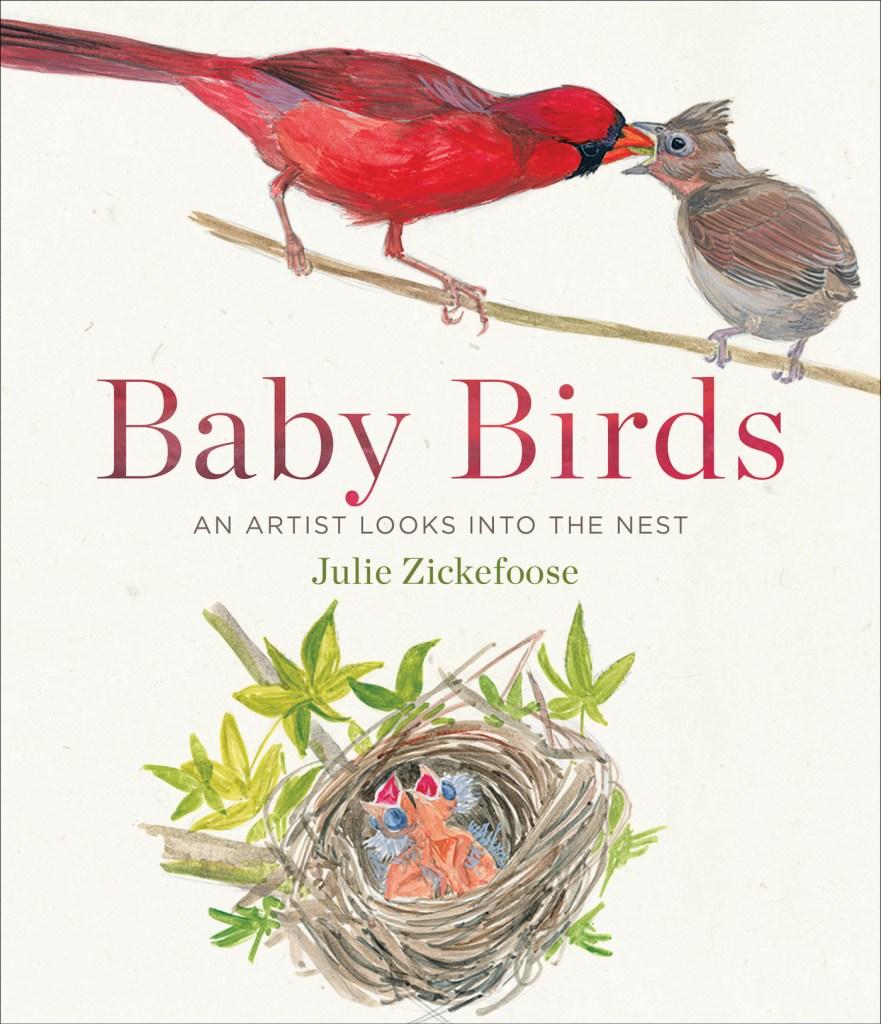 BabyBirdshirescover1.3mb