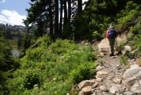 mt baker hiking, kids hiking, best hikes for kids, summer