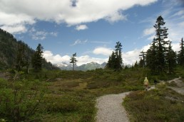 mt baker trails, hiking with children, summer
