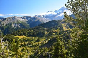 mt rainier, best hikes for kids, sunrise area, fall hiking, burroughs loop