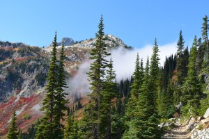 heather maple pass trail, north cascades, fall hiking, fall colors, hikes for kids