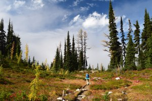 fall hiking, best hikes for kids, kids in nature, larches, heather pass, north cascades