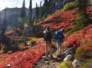 heather maple pass trail, hikes for kids, fall color, north cascades, larch hiking, red leaves, kids in nature
