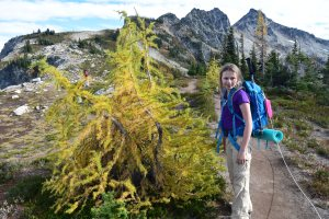 maple pass, heather maple pass trail, fall hikes, fall colors, yellow trees, kids in nature, best hikes for kids, north cascades