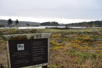lopez island, hikes for kids, rainy day hiking, birdwatching,