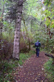 lopez island hiking, hikes for kids, bird watching, nature, forest