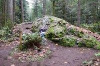 hikes for kids, urban nature walk