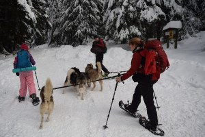 gold creek snowshoe, kids in nature, winter hiking, snoqualmie pass