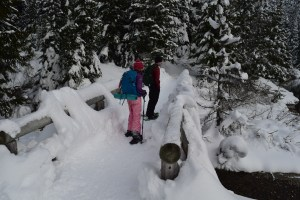 gold creek, kids snowshoeing, kids in nature, winter