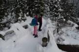 gold creek, kids snowshoeing, kids in nature, winter