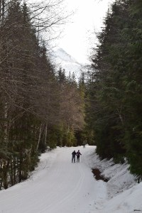 salmon ridge sno-park, winter snowshoes for families,