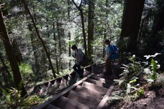 rock trail, bellingham, kids hiking, geology, larrabee state park