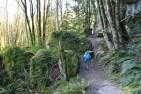 hikes for kids, rock trail, geology, washington, larrabee state park