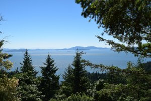 larrabee state park, fragrance lake trail, hikes for kids, puget sound, salish sea