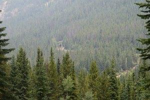 yoho national park, canada national parks, history, railroad