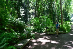 larrabee state park, fragrance lake trail, hiking, summer, hikes with kids