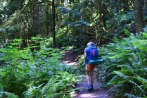 fragrance lake, larrabee state park, hiking with kids, summer, best hikes for kids