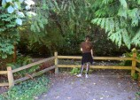 carkeek park, seattle parks, salmon, nature education