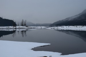 kachess lake, winter snowshoe hikes for kids, fog, water, kachess lake