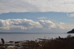 point no point county park, puget sound, seattle, hikes for kids, beach, water, clouds