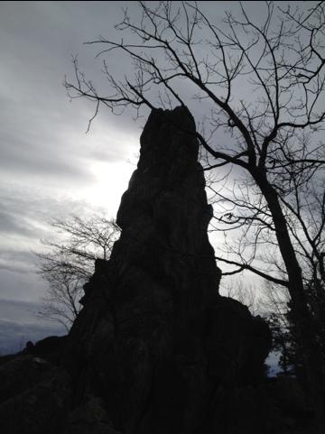 20121211-052721.jpg