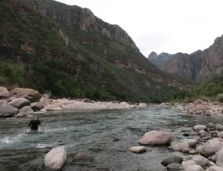 River crossing quadpod